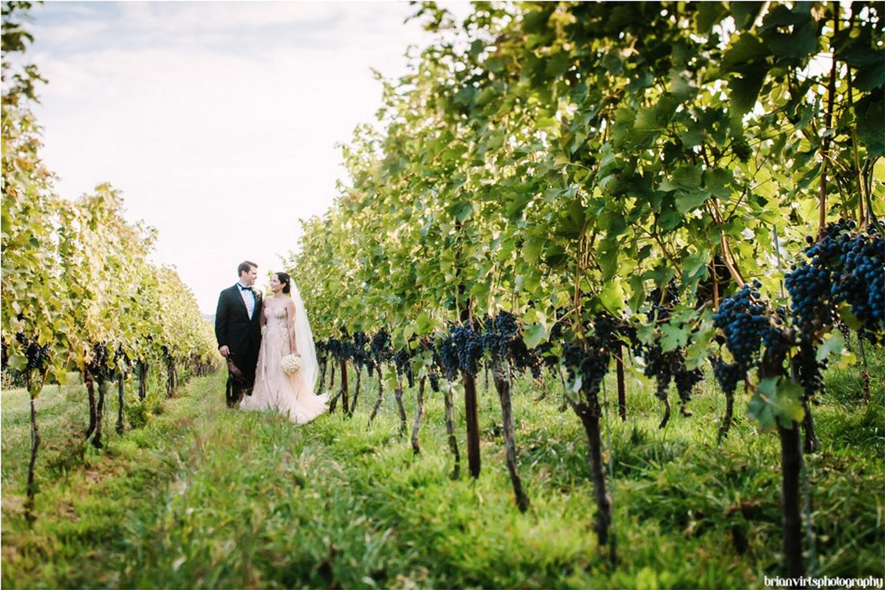 vinyard_wedding_bride_groom
