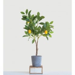 faux-potted-lemon-tree-relish-decor