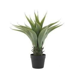 faux-potted-agave-relish-decor