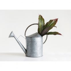 galvanized-metal-watering-can-relish-decor