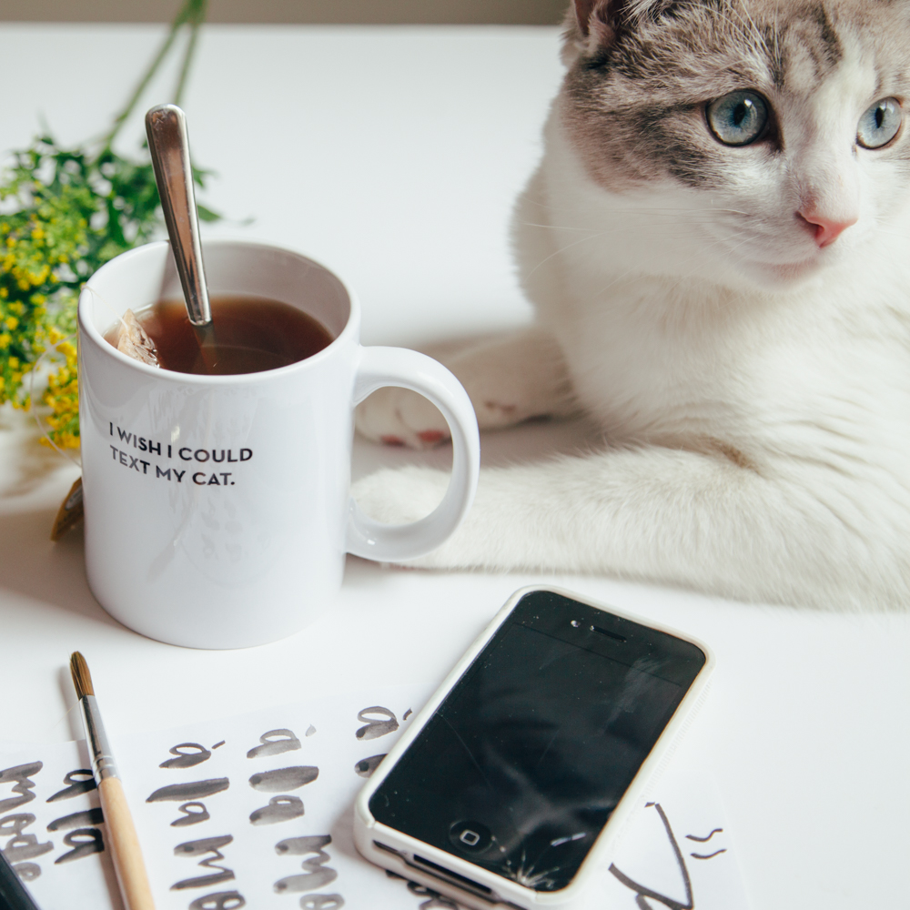 I Wish I Could Text My Cat Mug Sapling Press Relish Decor