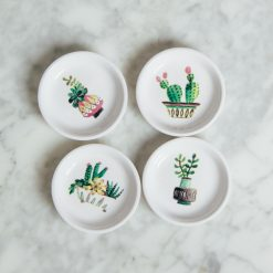 sedona trinket dishes relish decor cacti desert