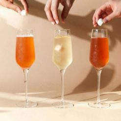 teaspressa-instant-champagne-cocktail-kit-relish-decor