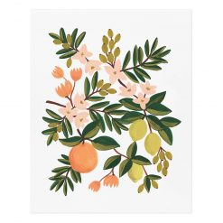 rifle-paper-co-citrus-floral-art-print-relish-decor