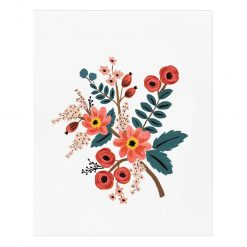 rifle-paper-co-coral-botanical-art-print-relish-decor