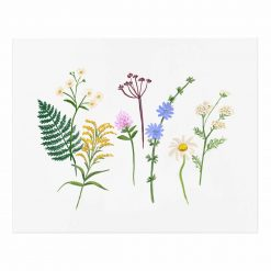 rifle-paper-co-wildflowers-art-print-relish-decor