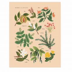 rifle-paper-co-herbs-and-spices-peach-art-print-relish-decor